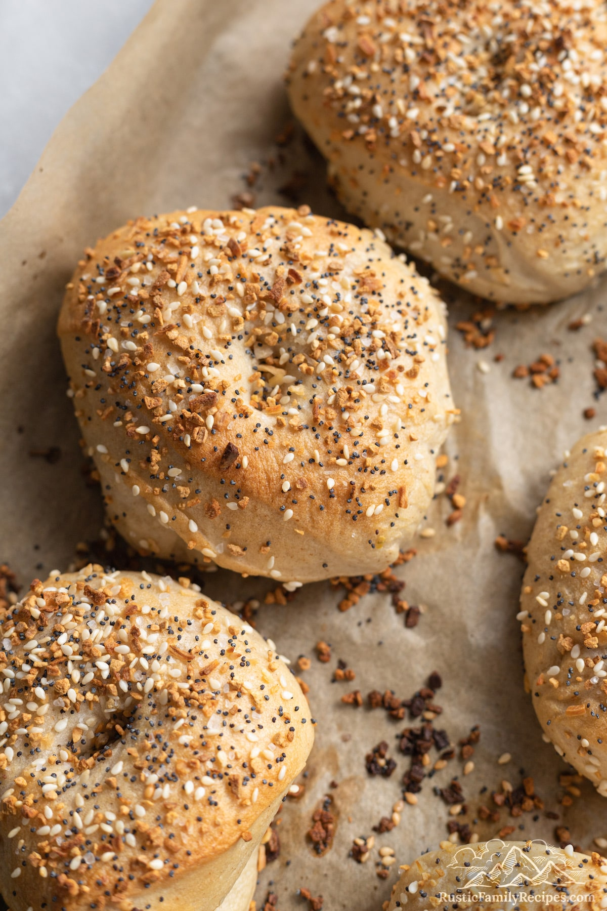 Freshly baked sourdough everything bagels on a baking sheet