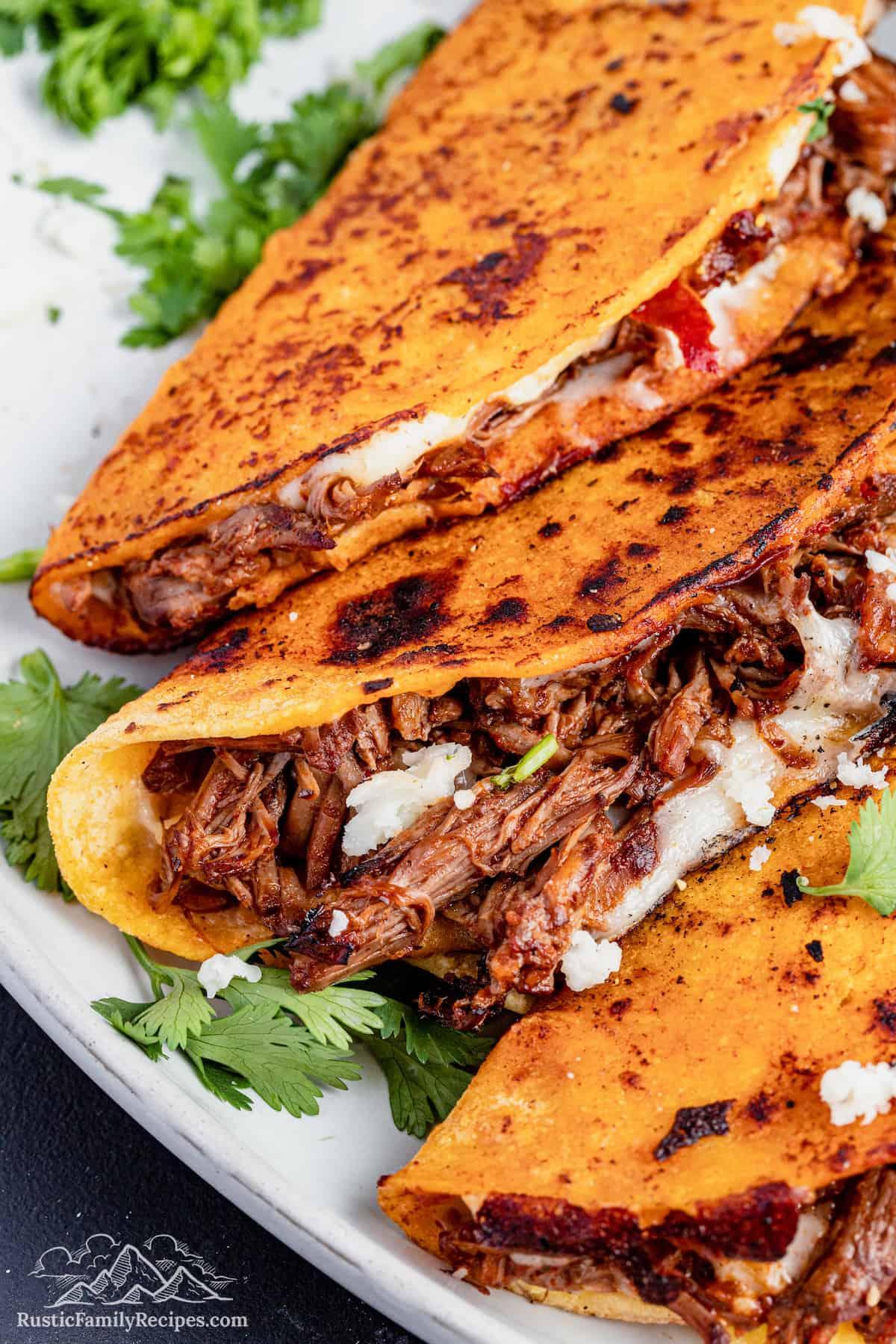 Quesadbirria tacos on a plate